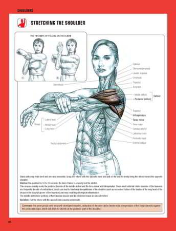 Strength Training Anatomy Styrketrningsanatomi